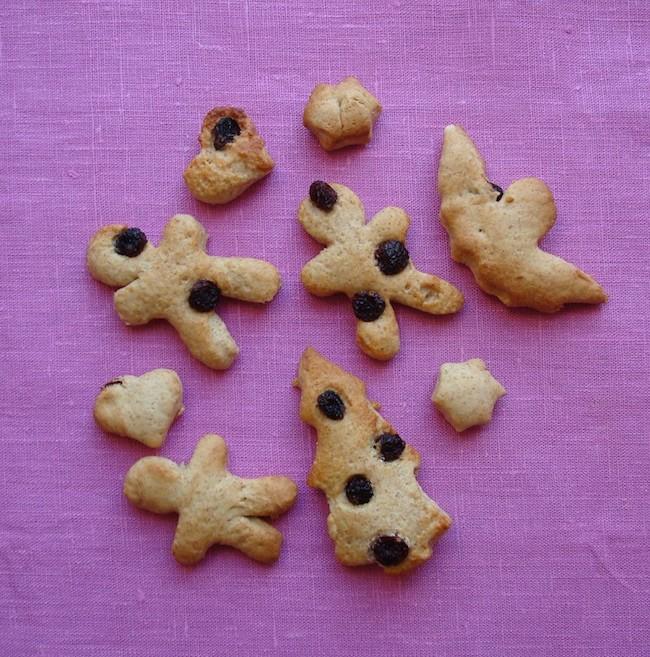 Biscotti leggeri ai mirtilli rossi